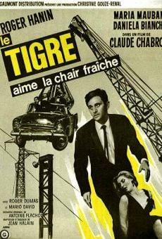 Ver película El Tigre