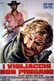 Ver película El vengador del sur
