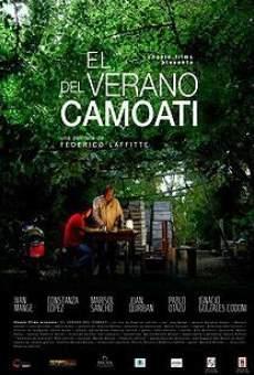 Ver película El verano del camoatí