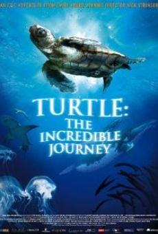 El viaje de la tortuga online