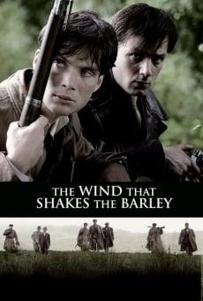 Ver película El viento que agita la cebada