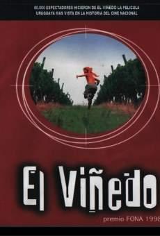 Ver película El Viñedo