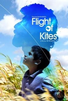 Ver película El vuelo de las cometas
