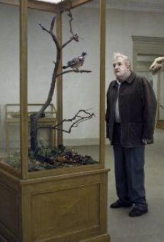 Un piccione seduto su un ramo riflette sull'esistenza online