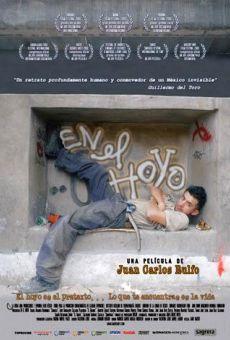 Ver película En el hoyo