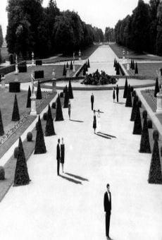 Dans le labyrinthe de Marienbad
