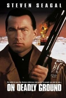 Ver película En tierra peligrosa