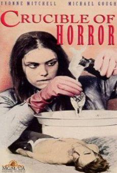 Ver película Encrucijada de horror