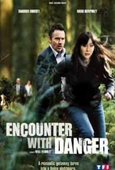 Ver película Encuentro con el peligro