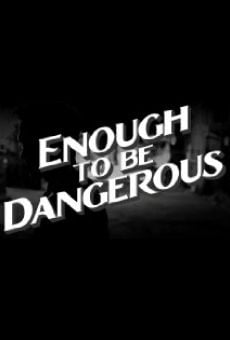 Enough to Be Dangerous online free