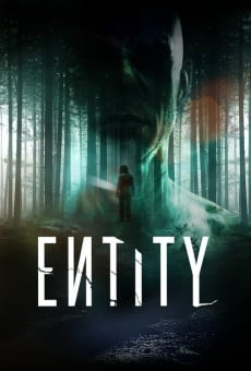 Watch Entity online stream