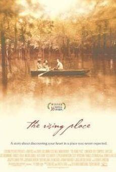 Ver película Entre el amor y la guerra
