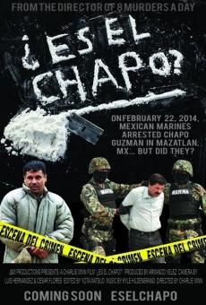 Ver película Es El Chapo?