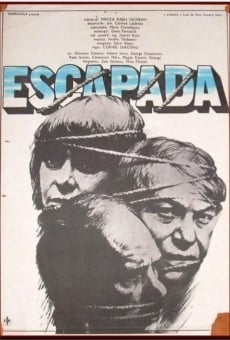 Ver película Escapada
