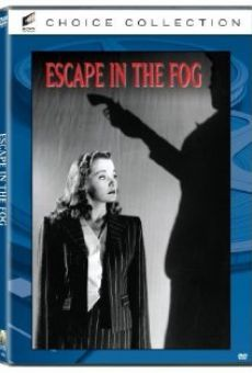 Escape in the Fog gratis