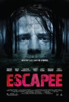 Ver película Escapee