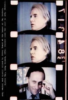 Scenes from the Life of Andy Warhol: Friendships and Intersections en ligne gratuit