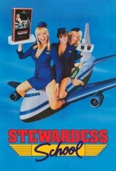Stewardess School gratis