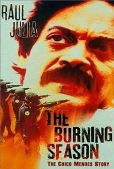 Ver película Estación ardiente