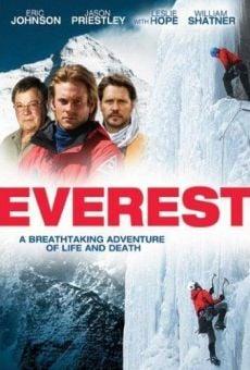 Ver película Everest