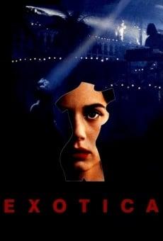 Ver película Exótica