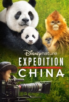 Expedition China on-line gratuito