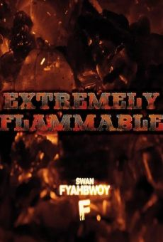 Ver película Extremely Flammable
