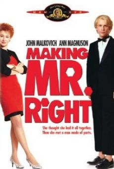 Making Mr. Right Online Free