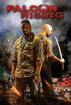 Ver película Falcon Rising