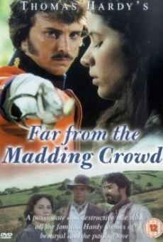 Ver película Far from the Madding Crowd