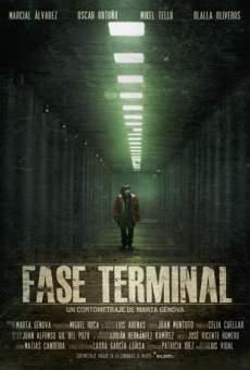 Ver película Fase Terminal