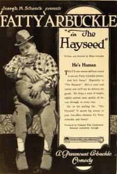 The Hayseed gratis