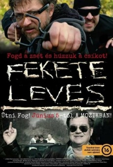 Ver película Fekete leves