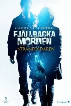 Ver película Los crímenes de Fjällbacka: El jinete de la costa