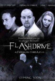 Ver película Flashdrive