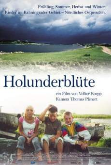 Holunderblüte online streaming