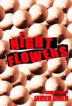 Night Flowes online free