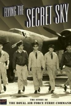 Flying the Secret Sky: The Story of the RAF Ferry Command on-line gratuito