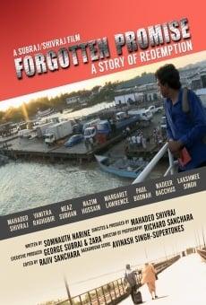 Ver película Forgotten Promise