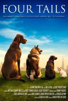 Ver película Four Tails