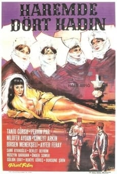 Ver película Four Women in A Harem