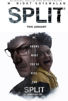 Ver película Fragmentado