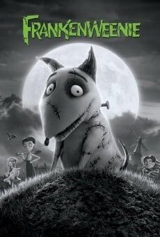 Ver película Frankenweenie