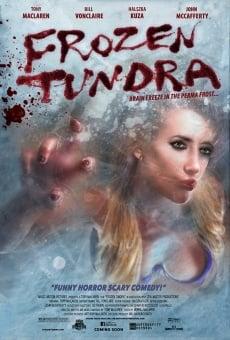 Frozen Tundra en ligne gratuit