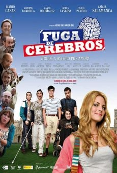 Fuga de cerebros online streaming