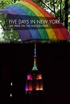Ver película Fünf Tage in New York - Gay Pride am Hudson