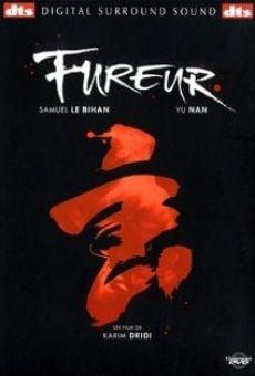 Ver película Fureur