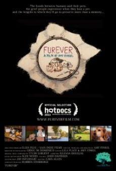 Ver película Furever