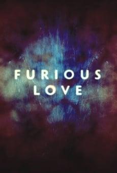 Ver película Furious Love