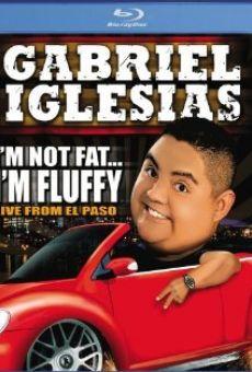 Ver película Gabriel Iglesias: I'm Not Fat... I'm Fluffy